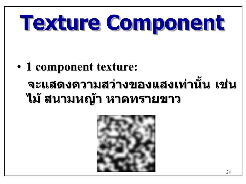 Texture Component 1 component texture:1 component texture: จะแสดงความสว่างของแสงเท่านั้น เช่น ไม้ สนามหญ้า หาดทรายขาว จะแสดงความสว่างของแสงเท่านั้น เช่น ไม้ สนามหญ้า หาดทรายขาว 20