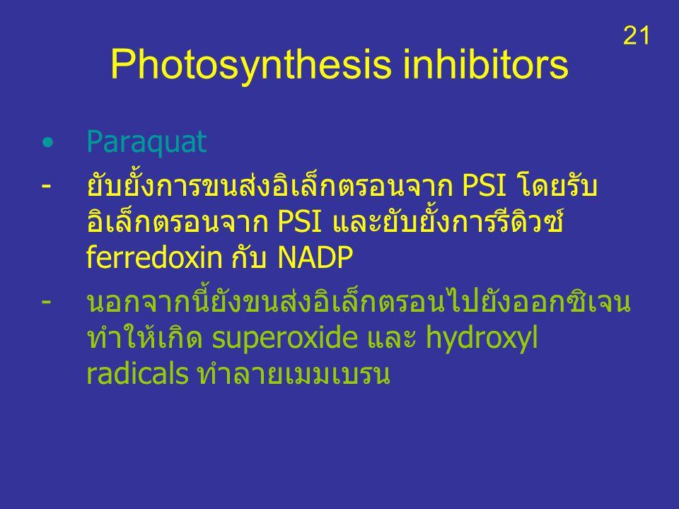 Photosynthesis inhibitors Paraquat -ยับยั้งการขนส่งอิเล็กตรอนจาก PSI โดยรับ อิเล็กตรอนจาก PSI และยับยั้งการรีดิวซ์ ferredoxin กับ NADP -นอกจากนี้ยังขน