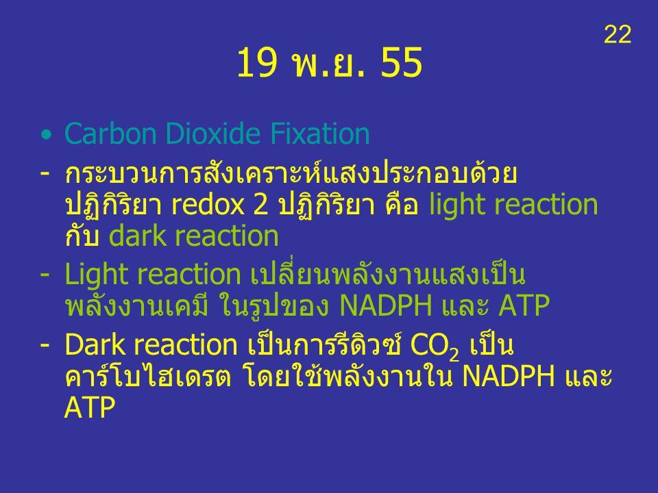 19 พ.ย. 55 Carbon Dioxide Fixation -กระบวนการสังเคราะห์แสงประกอบด้วย ปฏิกิริยา redox 2 ปฏิกิริยา คือ light reaction กับ dark reaction -Light reaction