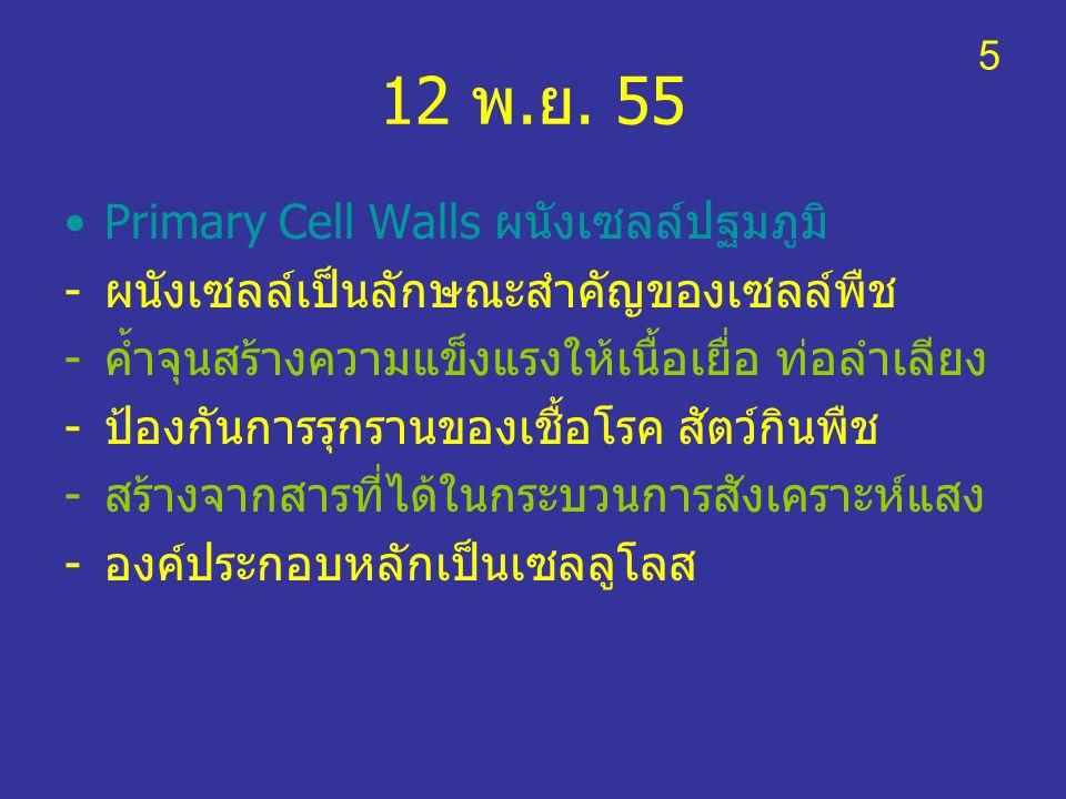 12 พ.ย. 55 Primary Cell Walls ผนังเซลล์ปฐมภูมิ -ผนังเซลล์เป็นลักษณะสำคัญของเซลล์พืช -ค้ำจุนสร้างความแข็งแรงให้เนื้อเยื่อ ท่อลำเลียง -ป้องกันการรุกรานข