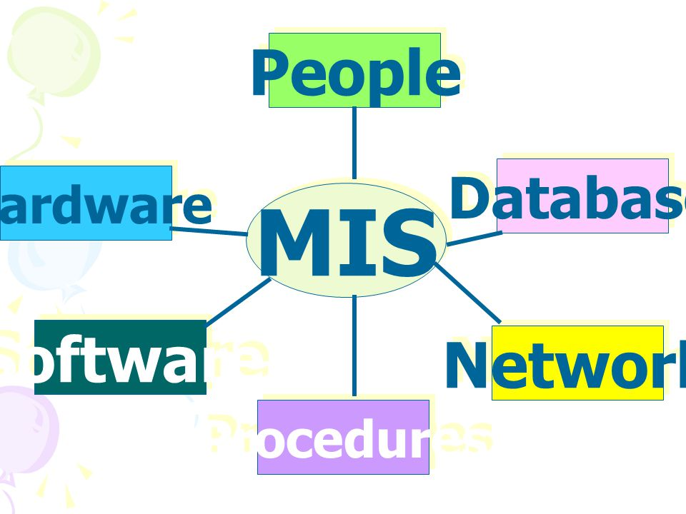 MIS Software People Hardware Database Network Procedures