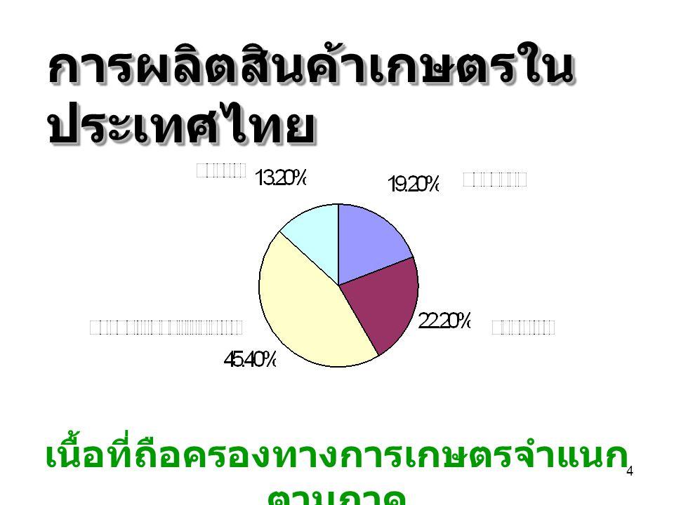 15 ขนาดการถือครองที่ดิน ของเกษตรกร