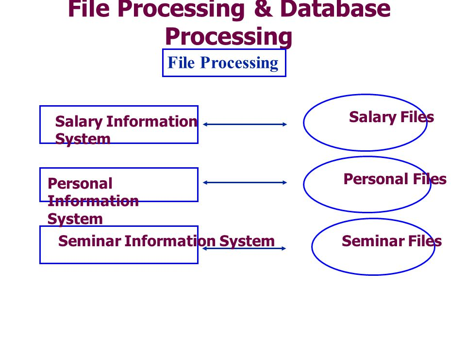 File Processing & Database Processing File Processing Salary Information System Personal Information System Seminar Information System Salary Files Personal Files Seminar Files