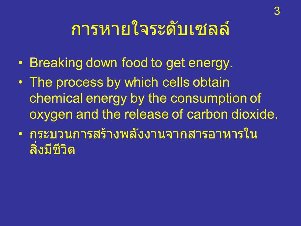 การหายใจระดับเซลล์ Breaking down food to get energy. The process by which cells obtain chemical energy by the consumption of oxygen and the release of