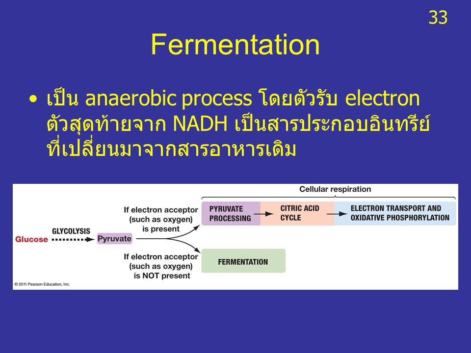 Fermentation เป็น anaerobic process โดยตัวรับ electron ตัวสุดท้ายจาก NADH เป็นสารประกอบอินทรีย์ ที่เปลี่ยนมาจากสารอาหารเดิม 33