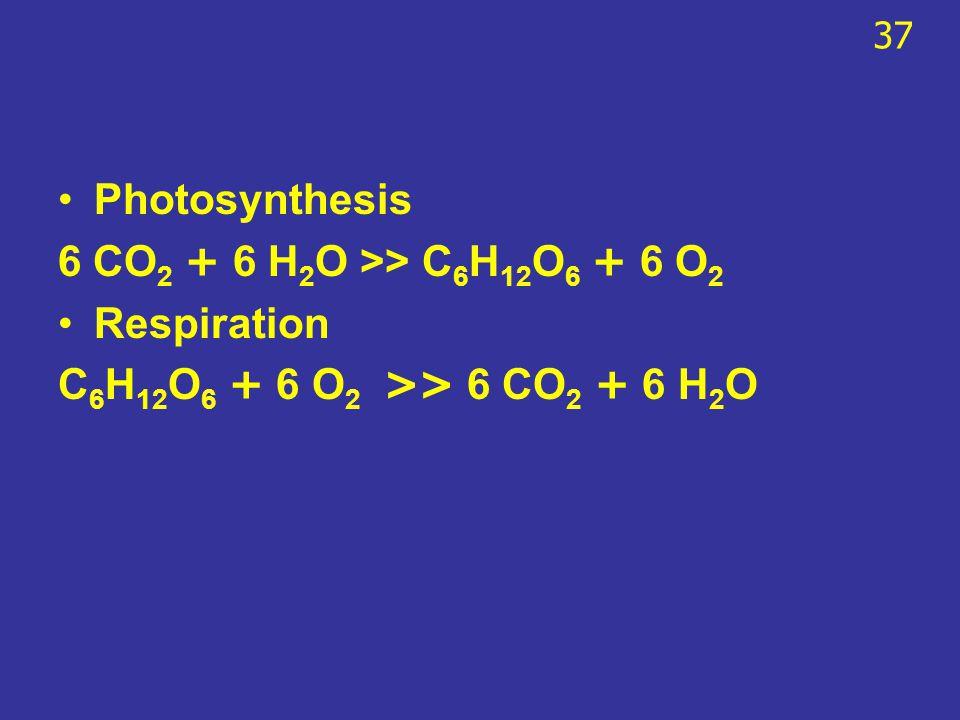 Photosynthesis 6 CO 2 + 6 H 2 O >> C 6 H 12 O 6 + 6 O 2 Respiration C 6 H 12 O 6 + 6 O 2 >> 6 CO 2 + 6 H 2 O 37