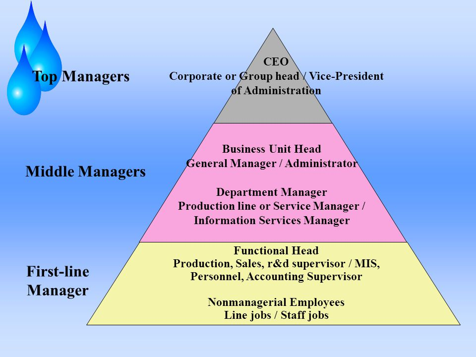 Top Managers CEO Corporate or Group head / Vice-President of Administration Business Unit Head General Manager / Administrator Department Manager Prod