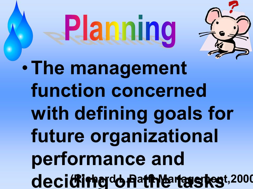 The management function concerned with defining goals for future organizational performance and deciding on the tasks and resource use needed to attai