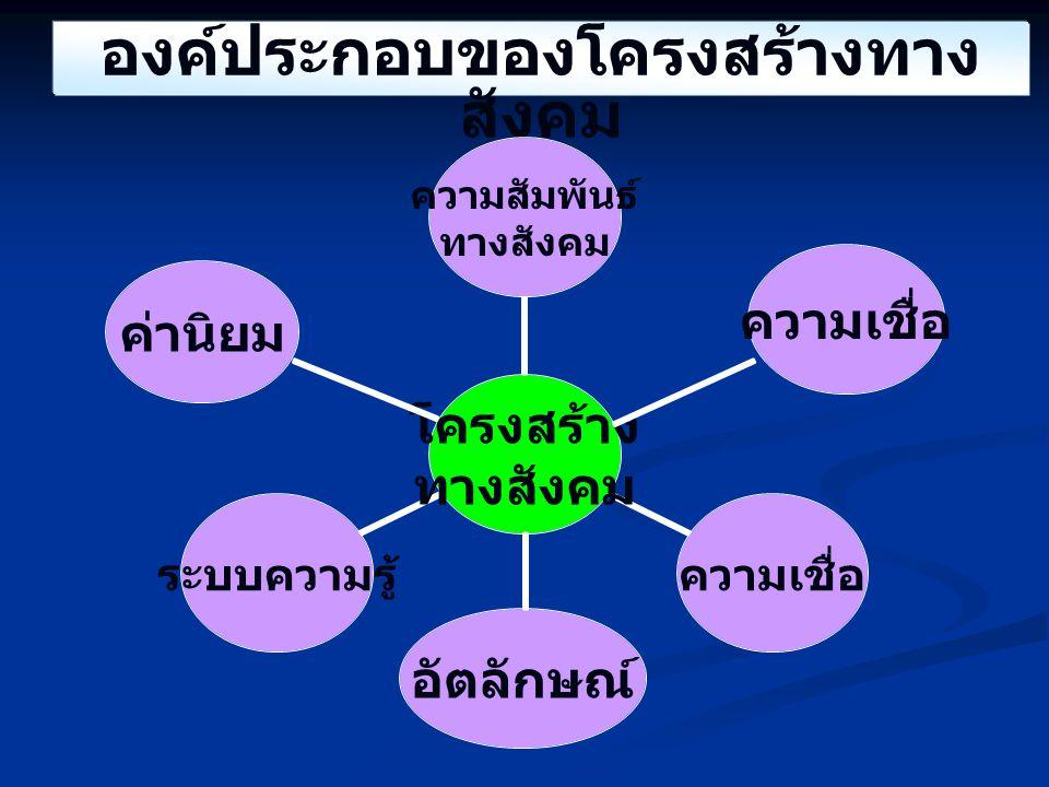 องค์ประกอบของโครงสร้างทาง สังคม ความเชื่อ ค่านิยม อัตลักษณ์