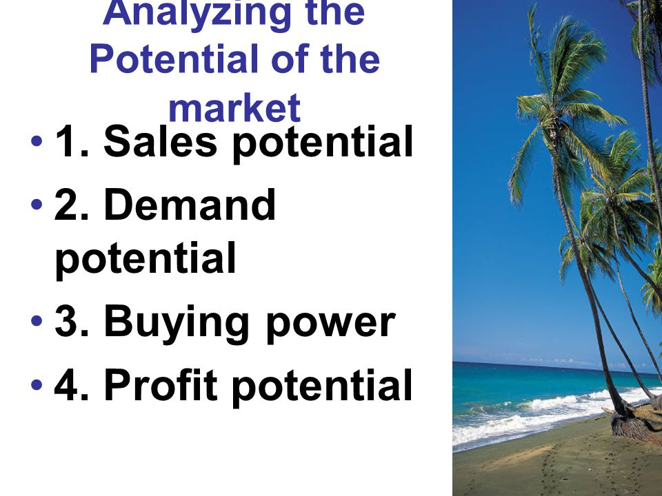 Analyzing the Potential of the market 1. Sales potential 2. Demand potential 3. Buying power 4. Profit potential