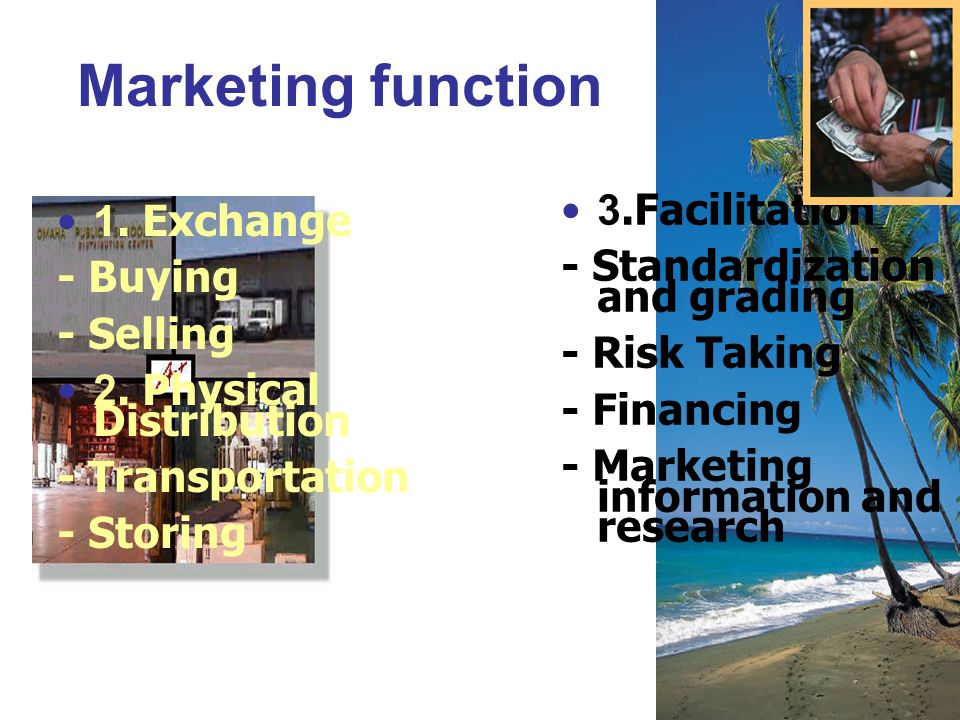Marketing function 1. Exchange - Buying - Selling 2. Physical Distribution - Transportation - Storing 3.Facilitation - Standardization and grading - R