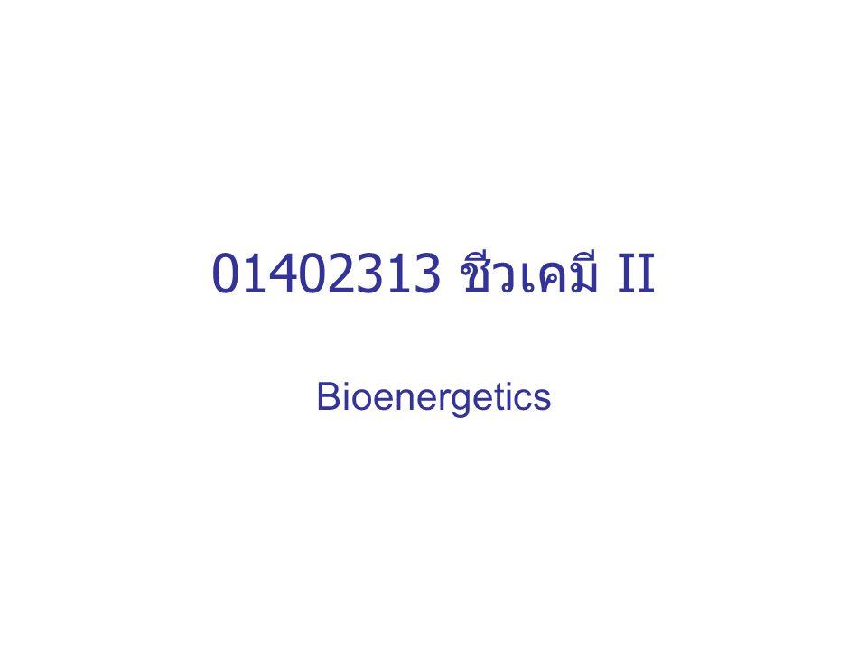 01402313 ชีวเคมี II Bioenergetics