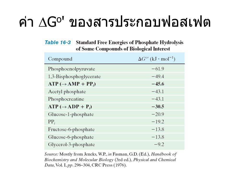 Consumption of ATP ใช้ ATP เพื่อ...