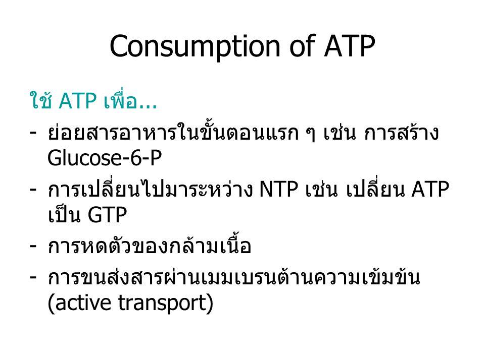 Formation of ATP วิธีที่ใช้สร้าง ATP -substrate-level phosphorylation พบใน ขั้นตอนแรก ๆ ของ carbohydrate metabolism -Oxidative phosphorylation และ photophosphorylation ซึ่งอาศัยพลังงานจาก การขนส่ง H + ผ่าน membrane