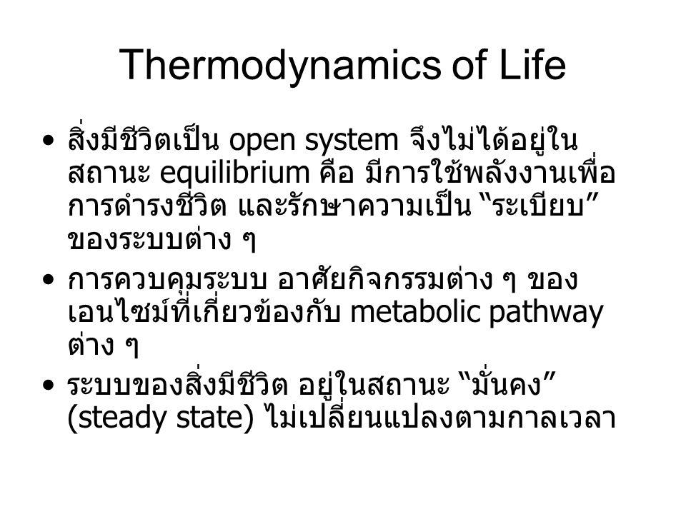 "Thermodynamics of Life สิ่งมีชีวิตเป็น open system จึงไม่ได้อยู่ใน สถานะ equilibrium คือ มีการใช้พลังงานเพื่อ การดำรงชีวิต และรักษาความเป็น ""ระเบียบ"""