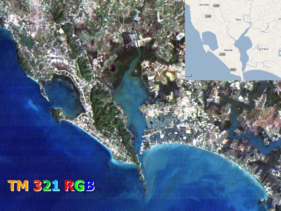 TM 321 RGB