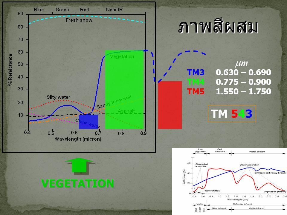 ภาพสีผสม TM30.630 – 0.690 TM40.775 – 0.900 TM51.550 – 1.750 mm TM 543 VEGETATION ? ? VEGETATION