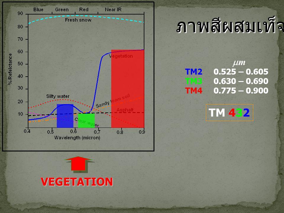 TM20.525 – 0.605 TM30.630 – 0.690 TM40.775 – 0.900 mm TM 432 VEGETATION ? ? VEGETATION ภาพสีผสมเท็จ