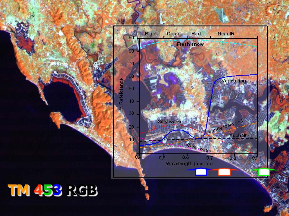 TM 453 RGB
