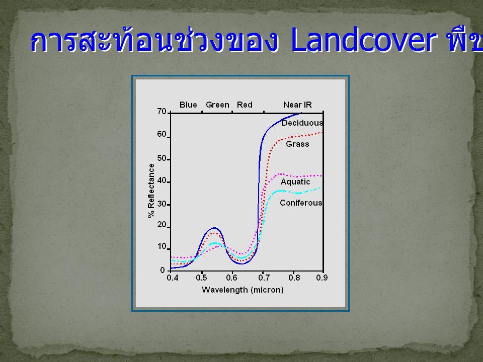 การสะท้อนช่วงของ Landcover พืช