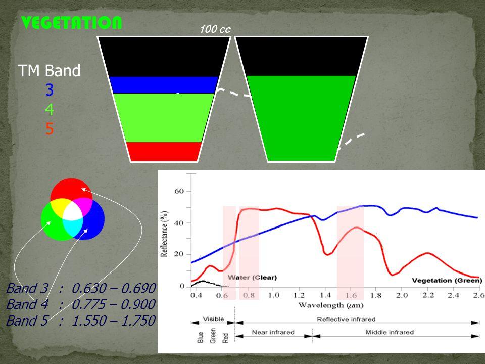 TM Band 3 4 5 VEGETATION 100 cc Band 3 : 0.630 – 0.690 Band 4 : 0.775 – 0.900 Band 5 : 1.550 – 1.750