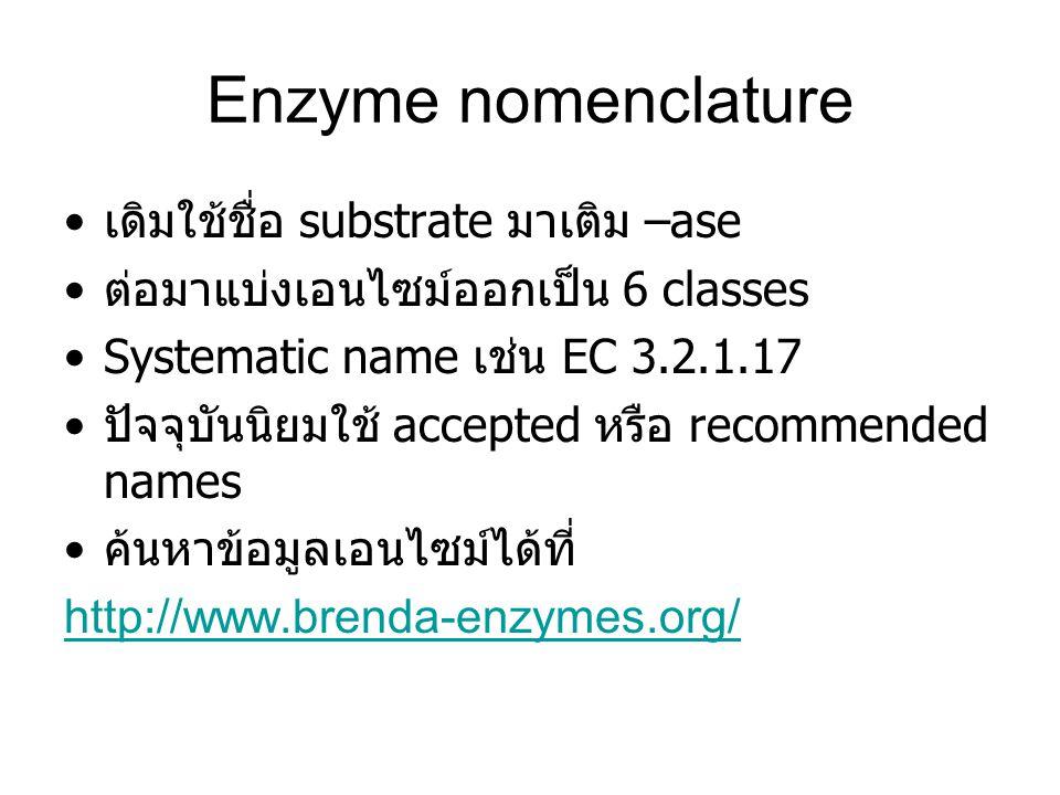 Enzyme nomenclature เดิมใช้ชื่อ substrate มาเติม –ase ต่อมาแบ่งเอนไซม์ออกเป็น 6 classes Systematic name เช่น EC 3.2.1.17 ปัจจุบันนิยมใช้ accepted หรือ