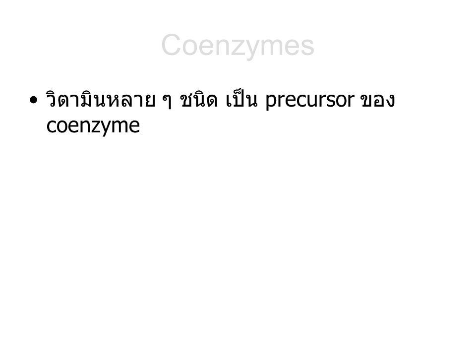 วิตามินหลาย ๆ ชนิด เป็น precursor ของ coenzyme