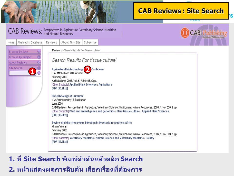 CAB Reviews : Site Search 1. ที่ Site Search พิมพ์คำค้นแล้วคลิก Search 2.
