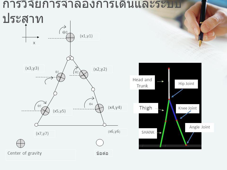 การวิจัยการจำลองการเดินและระบบ ประสาท x y Center of gravity ข้อต่อ (x1,y1) ( x2,y2 ) ( x3,y3 ) ( x4,y4 ) (x5,y5) ( x6,y6 ) (x7,y7) Θ1 Θ2 Θ3 Θ4 Θ5 Head