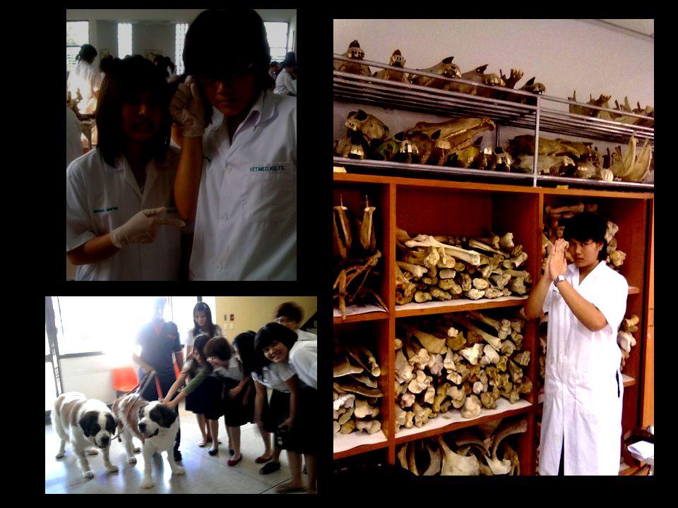 ณ ขณะจิตนี้ ขวัญชนกกำลังศึกษาอยู่ มหาวิทยาลัยเกษตรศาสตร์ บางเขน คณะสัตวแพทยศาสตร์