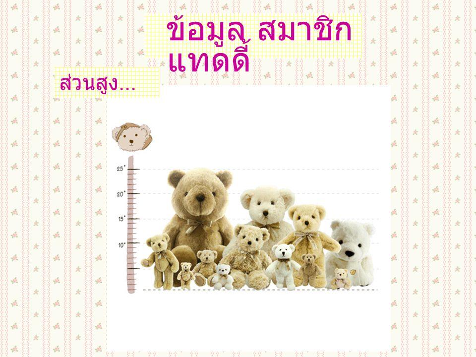 สมาชิก หมี แทดดี้