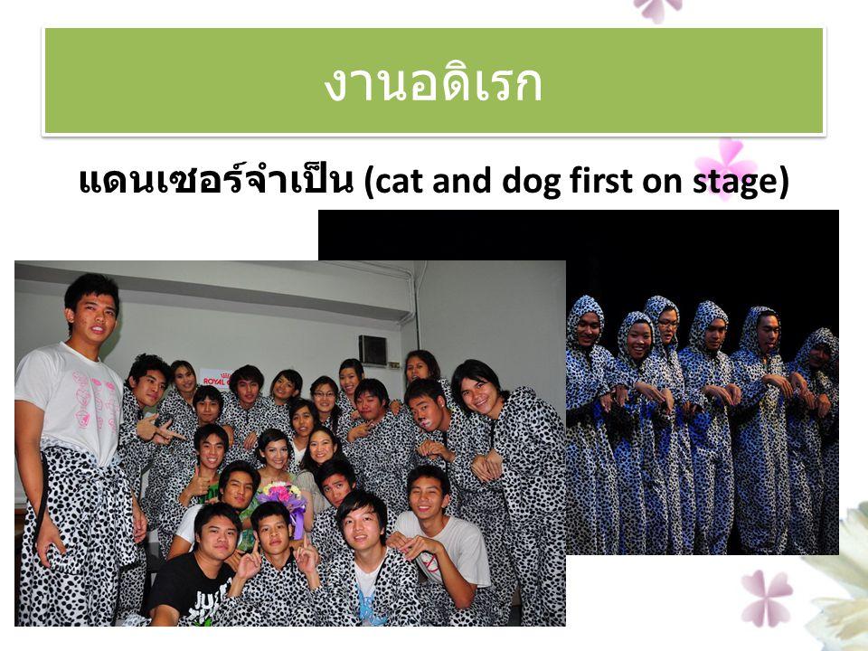 งานอดิเรก งานอดิเรก แดนเซอร์จำเป็น (cat and dog first on stage)