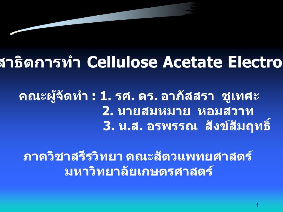 ตัดมุมหนึ่งของแผ่น cellulose acetate เพื่อให้ทราบตำแหน่งของสารตัวอย่าง และด้านขั้วบวก / ขั้วลบ นำแผ่น cellulose acetate มาวางใน rack 12