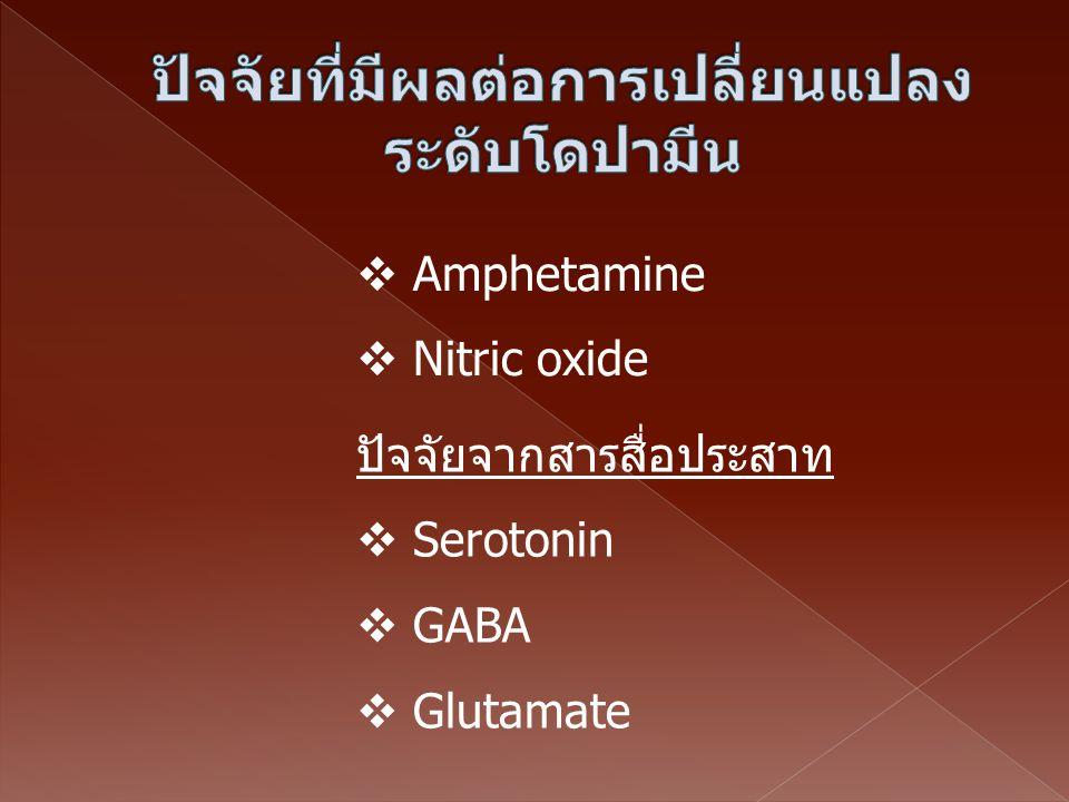 ปัจจัยจากสารสื่อประสาท  Serotonin  GABA  Glutamate  Amphetamine  Nitric oxide