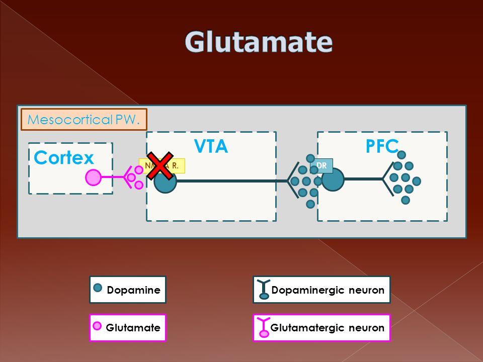 Cortex VTAPFC DRNMDA R. Mesocortical PW. Dopamine GlutamateDopaminergic neuron Glutamatergic neuron