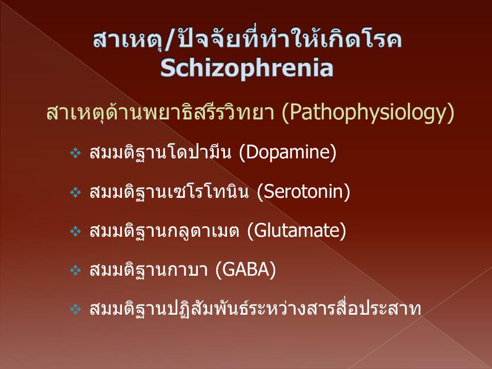  สมมติฐานโดปามีน (Dopamine)  สมมติฐานเซโรโทนิน (Serotonin)  สมมติฐานกลูตาเมต (Glutamate)  สมมติฐานกาบา (GABA)  สมมติฐานปฏิสัมพันธ์ระหว่างสารสื่อป