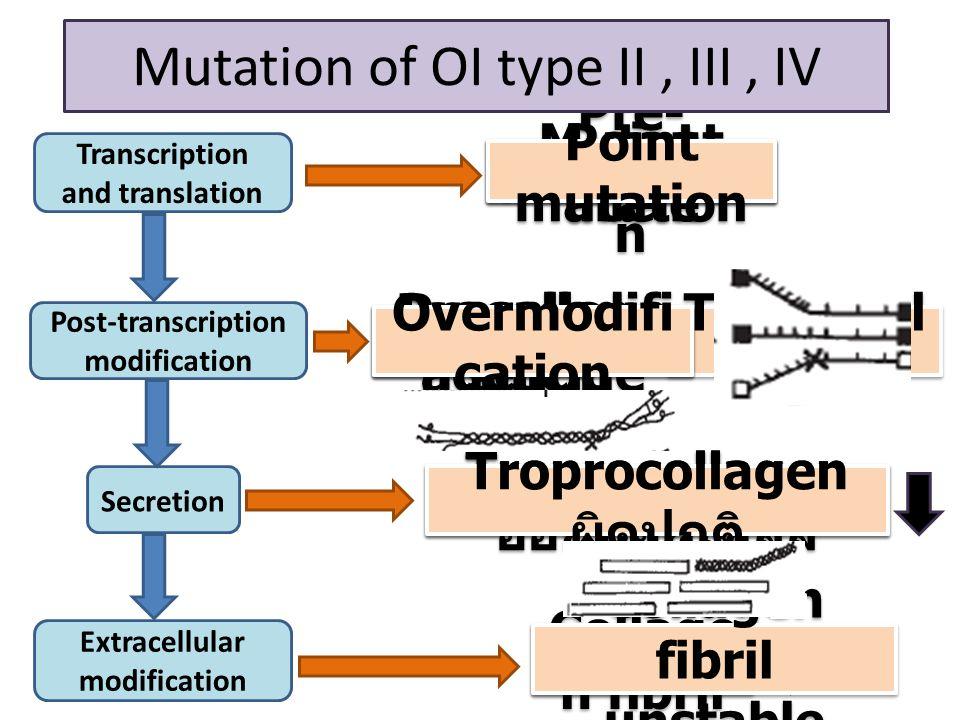 Troprocol lagen Normal COL1A1&COL1A2 Pre- procollage n Transcription and translation Post-transcription modification Secretion Extracellular modification Procoll agen Collage n fibril Troprocollagen ออกนอกเซลล์ Mutant allele Mutation of OI type I Procollage n suicide Mutation of OI type II, III, IV Point mutation Overmodifi cation Troprocollagen ผิดปกติ Collagen fibril unstable