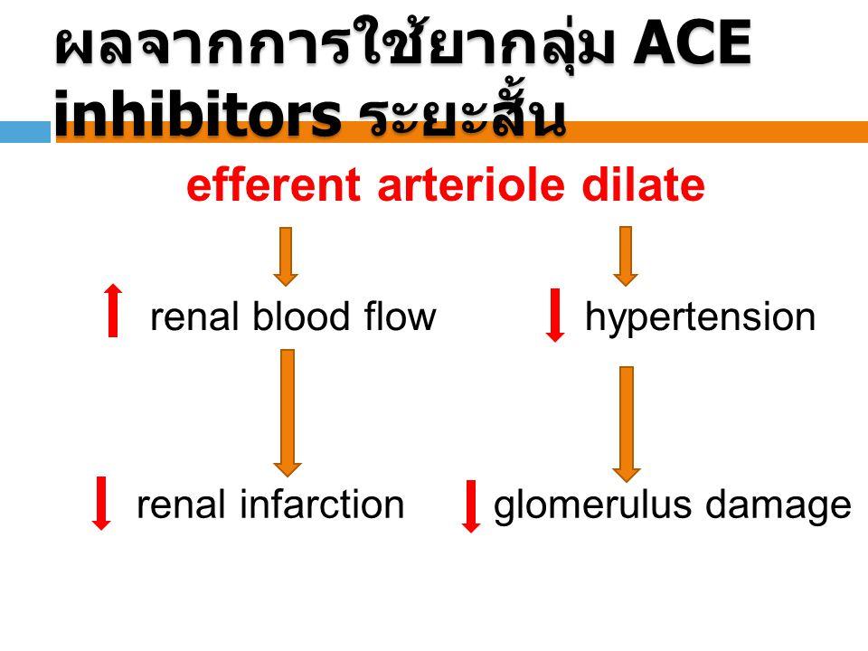 ผลจากการใช้ยากลุ่ม ACE inhibitors ระยะสั้น efferent arteriole dilate hypertension renal blood flow glomerulus damage renal infarction