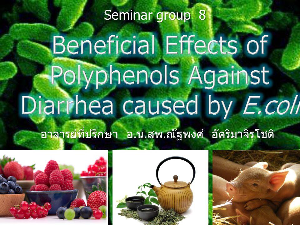 เกษตรกรแก้ไขโดยการใช้ยาปฏิชีวนะเพื่อป้องกัน สารตกค้างในผลิตภัณฑ์ ใช้สาร polyphenols ทดแทนยาปฏิชีวนะในการเลี้ยงสัตว์เพื่อลดปริมาณ เชื้อก่อโรคในลำไส้และไม่มีสารตกค้างที่ทำอันตรายต่อผู้บริโภค การตายของลูกสุกรเนื่องจากท้องเสีย สร้างความเสียหายให้แก่ ฟาร์มเลี้ยงสุกร ส่งผลเสียหายทางเศรษฐกิจ ผลิตสัตว์แบบปลอดสารเคมีโดยใช้ feed additive ที่มาจากธรรมชาติ ทำไมต้อง polyphenols ?