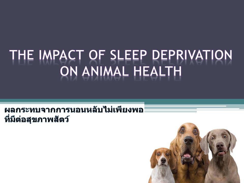 sleep melatonin ยับยั้ง adenylyl cyclase ผ่าน MT1 บนผิว thyrotroph กดการแสดงออกของ ยีนที่ใช้สังเคราะห์ TSH TSH การใช้พลังงาน อุณหภูมิร่างกายอบอุ่นคงที่ TH ขณะนอนหลับ thyroid hormone