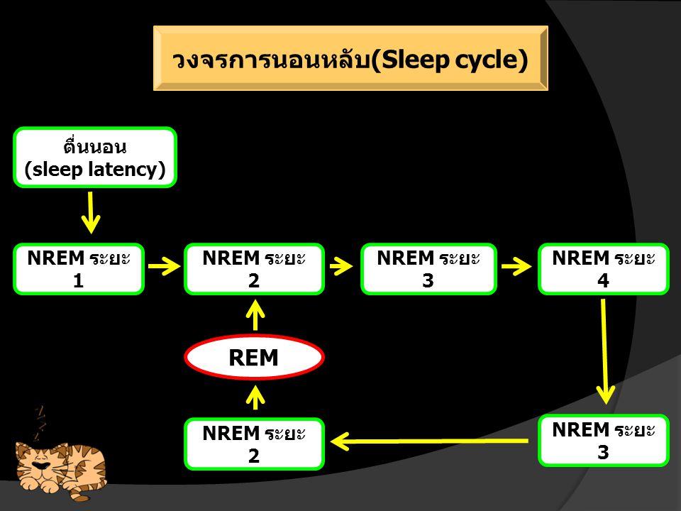 ปัจจัยโน้มนำการนอนหลับ (Sleep factor)  สิ่งแวดล้อม : แสง เสียง อุณหภูมิ  อายุ : วัยทารก VS วัยผู้ใหญ่  โภชนาการ : L-tryptophan  การออกกำลังกาย : หลับแบบ SWS ได้นานขึ้น