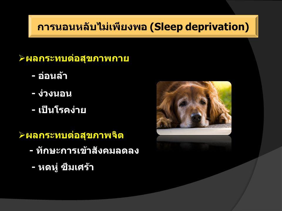 การนอนหลับไม่เพียงพอ (Sleep deprivation)  ผลกระทบต่อสุขภาพกาย - อ่อนล้า - ง่วงนอน - เป็นโรคง่าย  ผลกระทบต่อสุขภาพจิต - ทักษะการเข้าสังคมลดลง - หดหู่ ซึมเศร้า