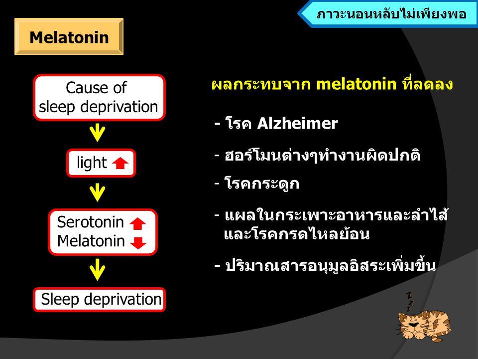 Sleep deprivation Melatonin, leptincortisol กดการทำงานของระบบภูมิคุ้มกัน ภาวะนอนหลับไม่เพียงพอทำให้ระบบภูมิคุ้มกันมีประสิทธิภาพการทำงาน ลดลง จึงเพิ่มโอกาสในการติดเชื้อ ร่างกายอ่อนแอและเจ็บป่วยได้ง่าย  ผลกระทบโดยอ้อมต่อการทำงานของระบบภูมิคุ้มกัน ผลจากการนอนหลับไม่เพียงพอต่อระบบภูมิคุ้มกัน ภาวะนอนหลับไม่เพียงพอ