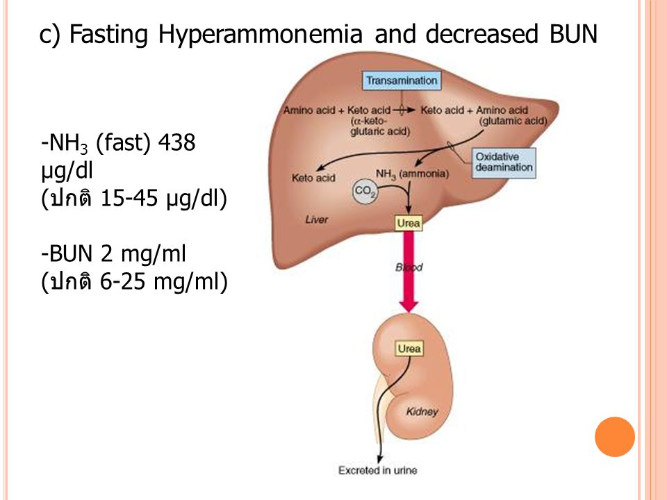 c) Fasting Hyperammonemia and decreased BUN -NH 3 (fast) 438 μg/dl (ปกติ 15-45 μg/dl) -BUN 2 mg/ml (ปกติ 6-25 mg/ml)