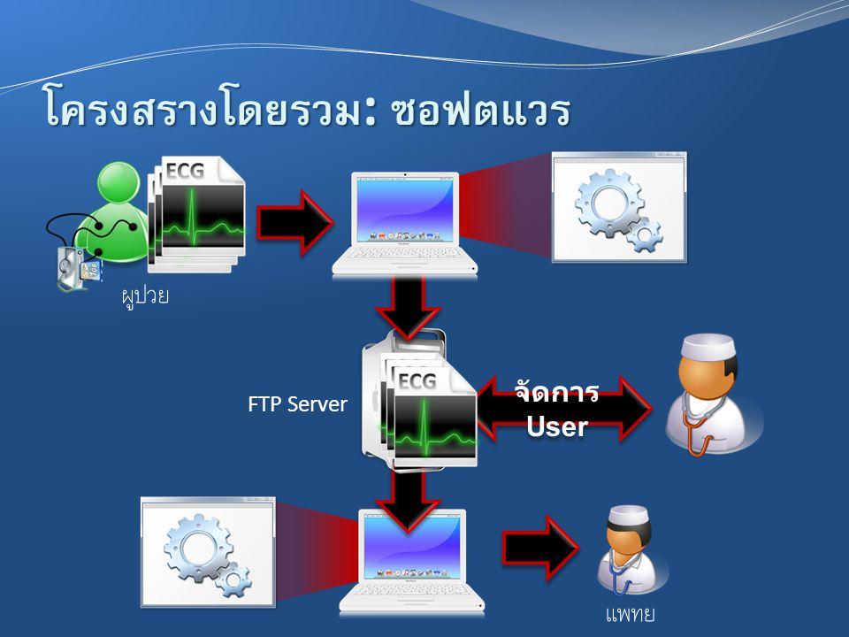 โครงสร้างโดยรวม : ซอฟต์แวร์ FTP Server ผู้ป่วย แพทย์ จัดการ User