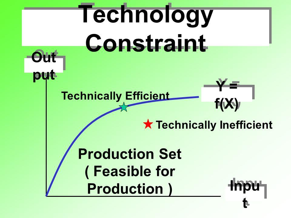 Technological Progress L K After: Q = 100 Before: Q = 100 Neutral Technological Progress