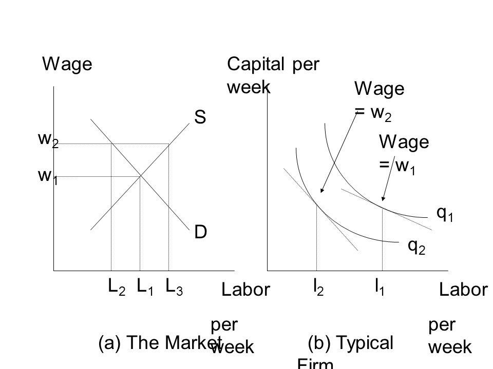 WageCapital per week Labor per week Labor per week (a) The Market (b) Typical Firm L3L3 L1L1 w2w2 L2L2 w1w1 S D l2l2 Wage = w 2 Wage = w 1 l1l1 q2q2 q