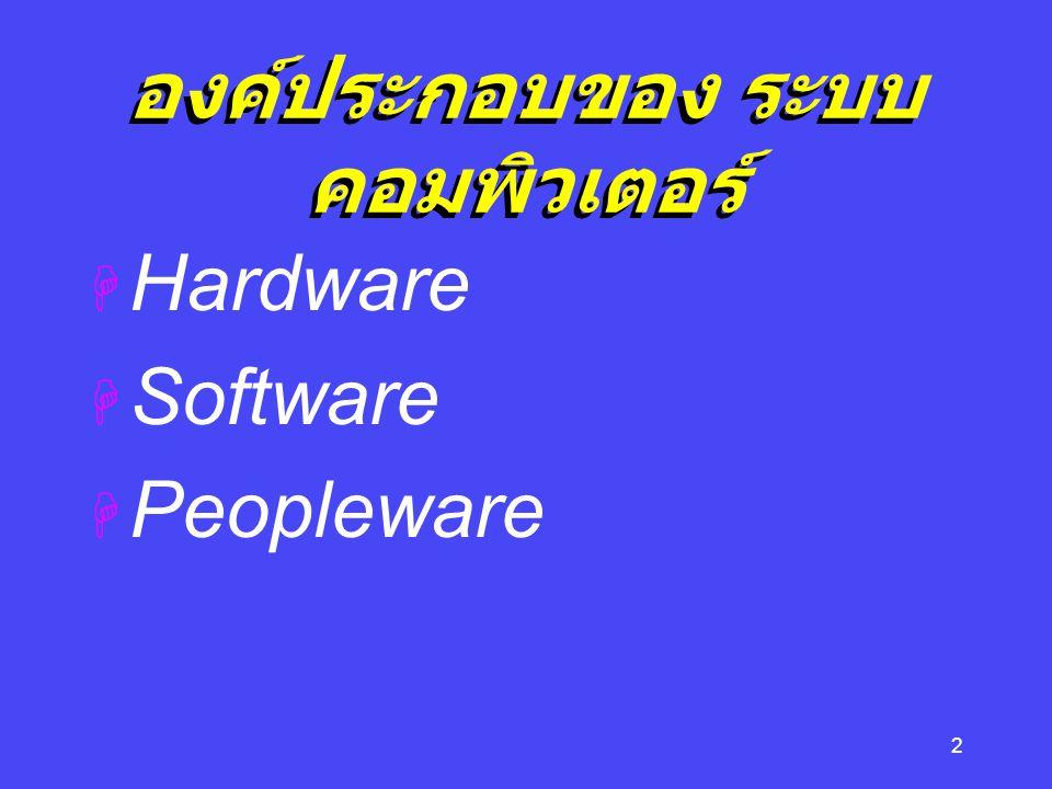13 Input Devices คืออุปกรณ์รับข้อมูลและเปลี่ยน ในรูปที่ computer สามารถ เข้าใจ