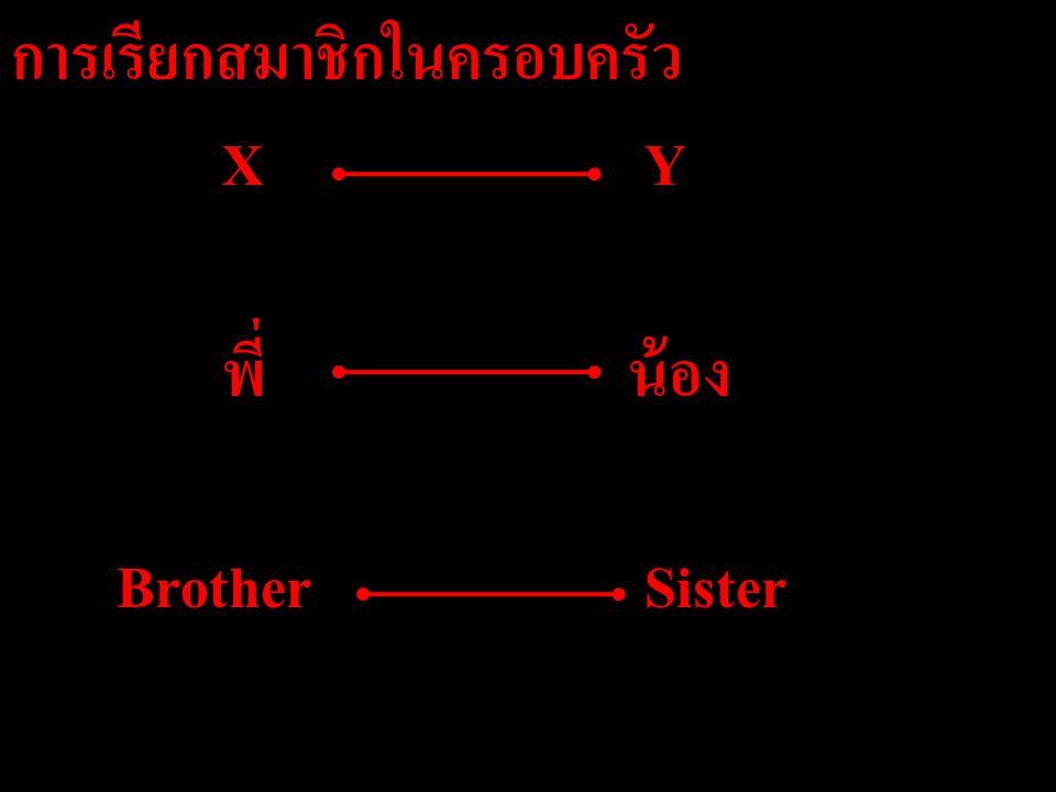 การเรียกสมาชิกในครอบครัว XY พี่ น้อง BrotherSister