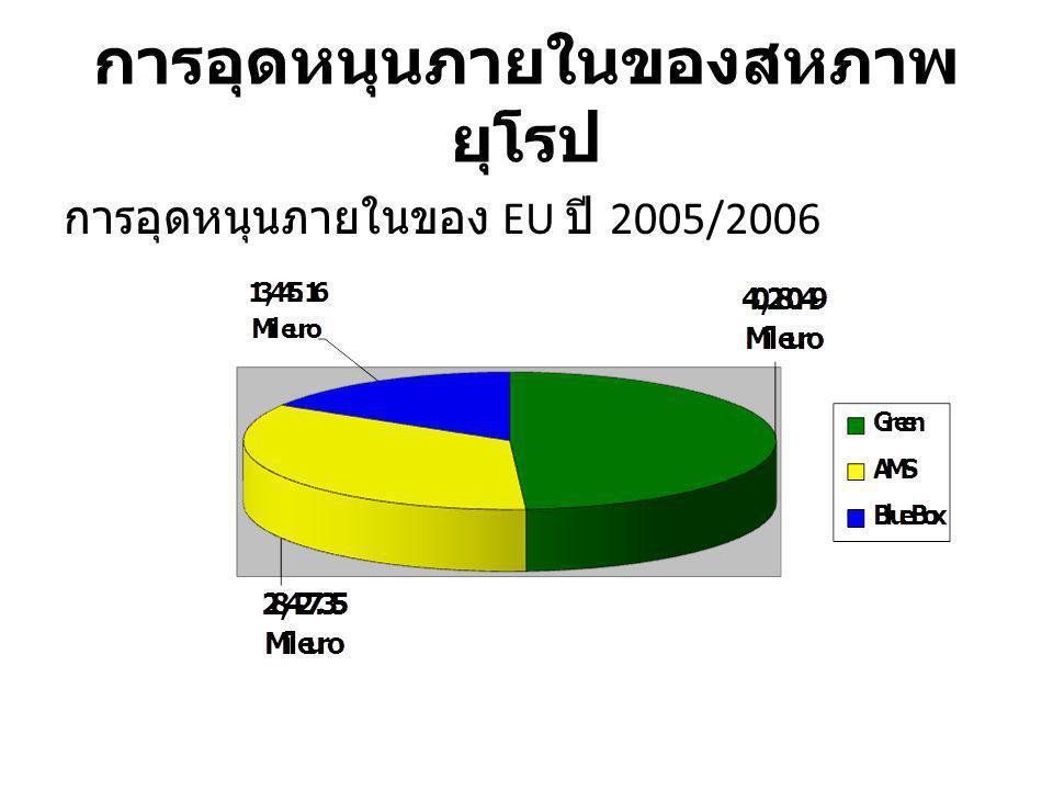 การอุดหนุนภายในของ EU ปี 2005/2006